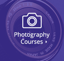 Top Online Courses in Photography