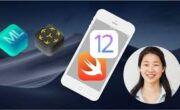 93% Off iOS 12 Swift 4.2 - The Complete iOS App Development Bootcamp