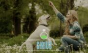 92% Off Science-Based Dog Training (with Feeling) - All 3 Days