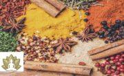 92% Off Health & Wellness with Ayurveda
